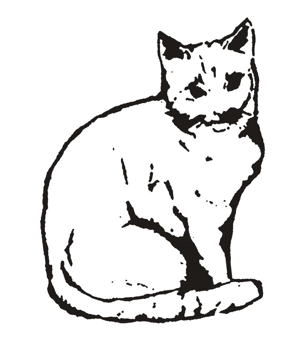 Katzenhilfe Westerwald e.V.